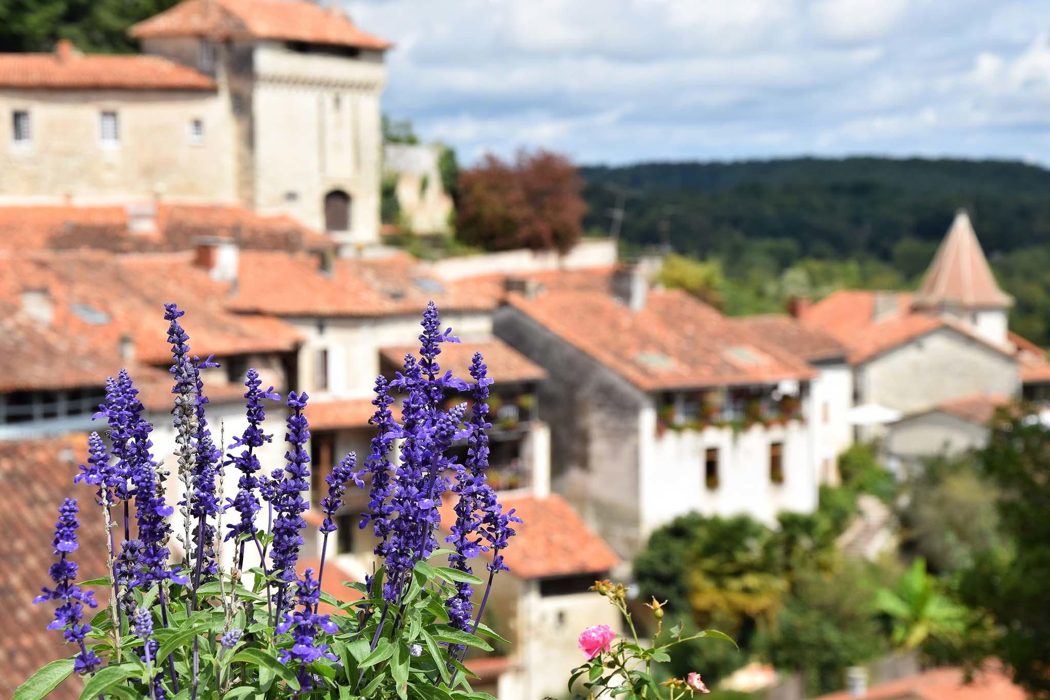 Aubeterre-sur-Dronne scenery with lavender