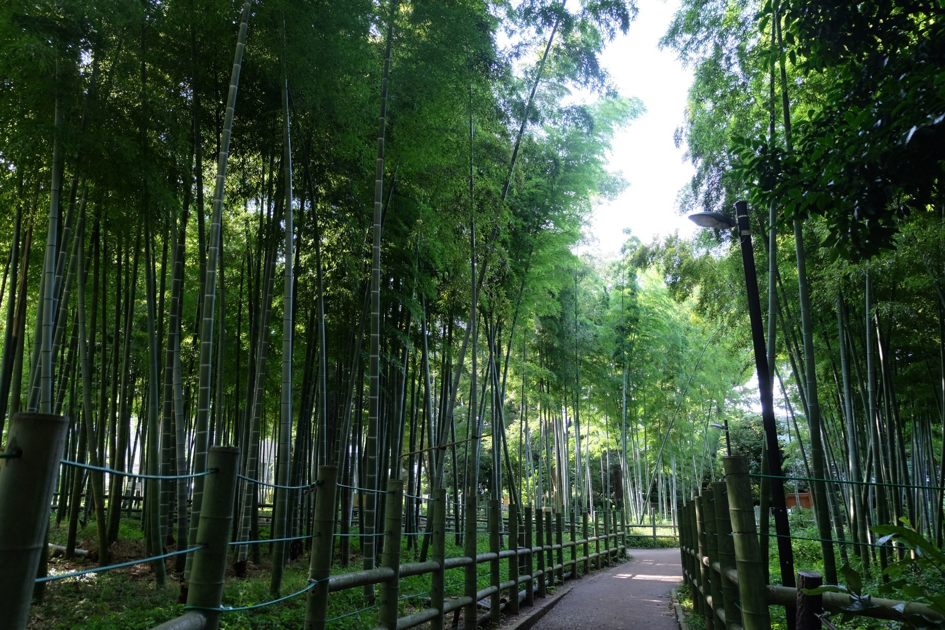 Suzume no Oyado Ryokuchi Park