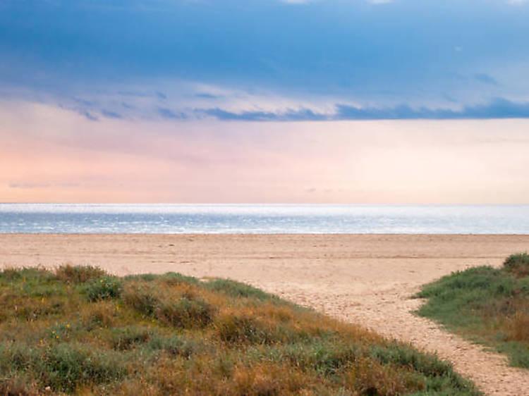 Platges del Remolar i el Francès (Viladecans)
