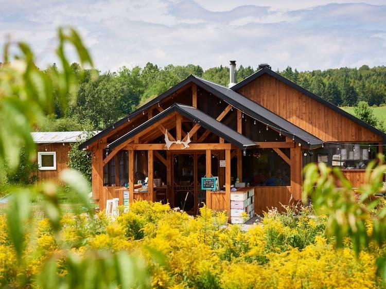 Cantine Pollens & Nectars — Miel d'Anicet
