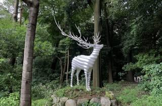 Meiji Jingu Forest Art Festival