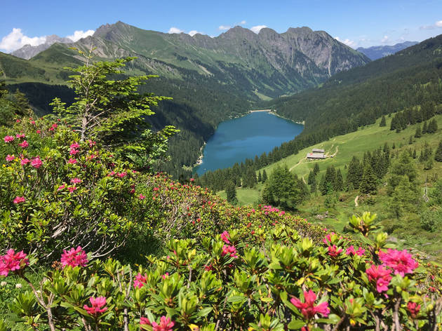 Lake Retaud surrounded by flowers and mountains.