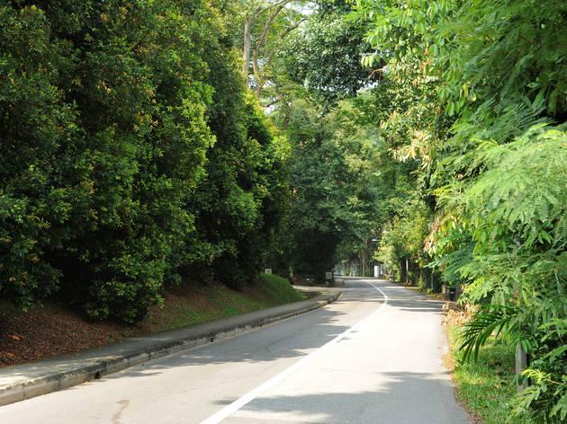 Mount Pleasant Road