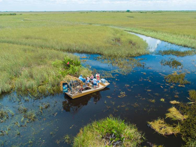 Hop on a boat tour of Everglades National Park
