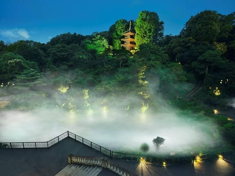 東京雲海&千の光のライトアップ