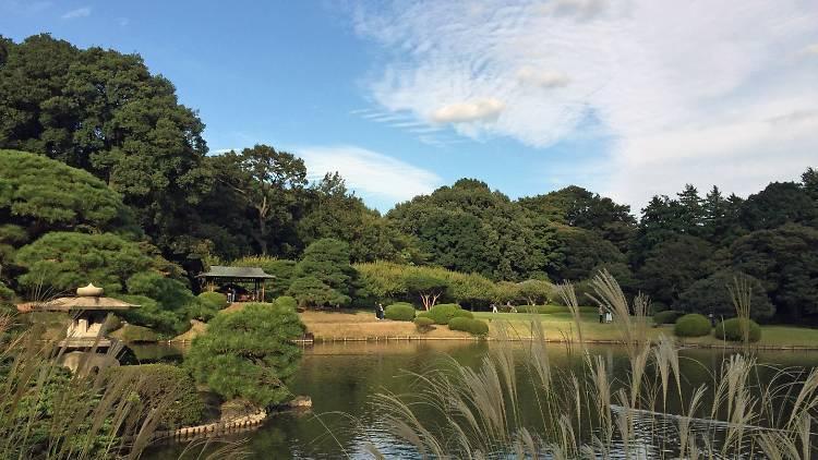 Shinjuku Gyoen National Garden, Management Office