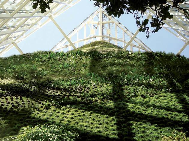 Jardín vertical Torre de Cristal
