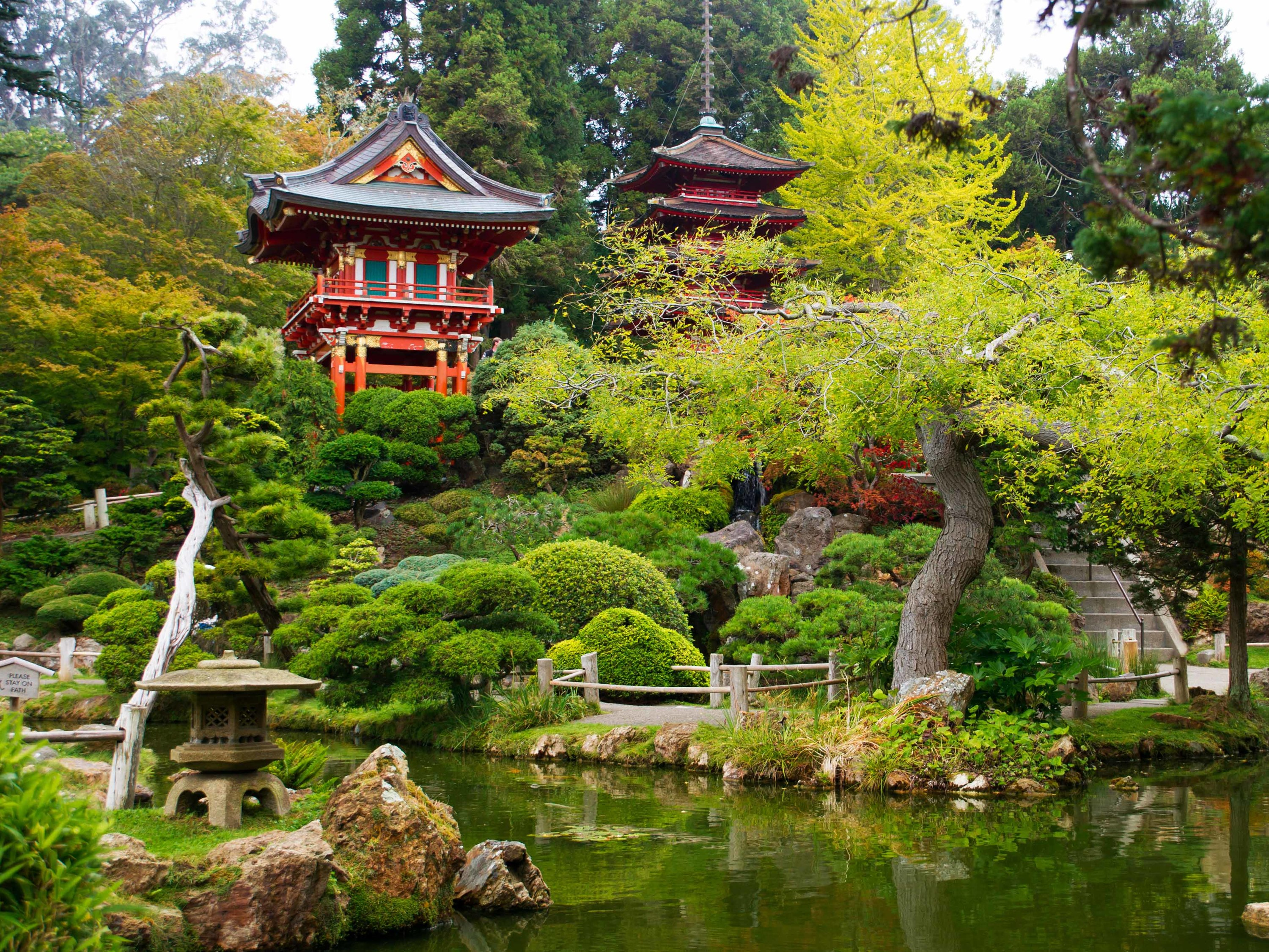 Japanese Tea Gardens, San Francisco, California