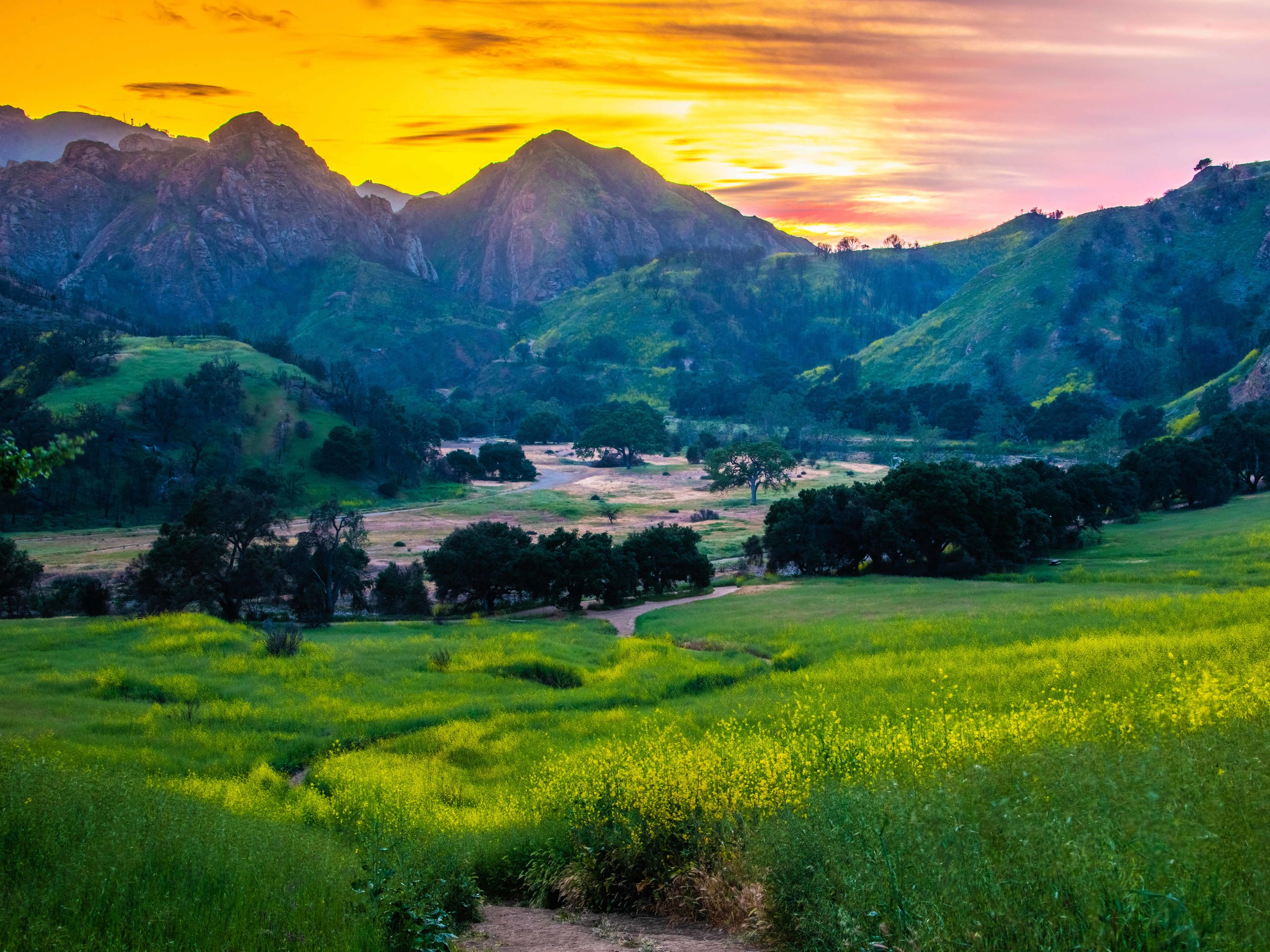 Malibu Creek State Park, Los Angeles, California