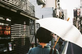 Japan summer umbrella