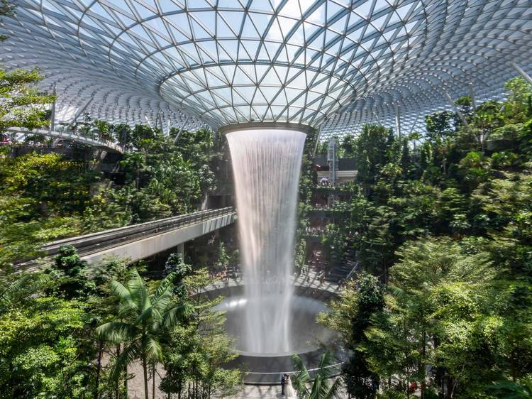 Admire at the world's tallest indoor waterfall at Jewel Changi Airport