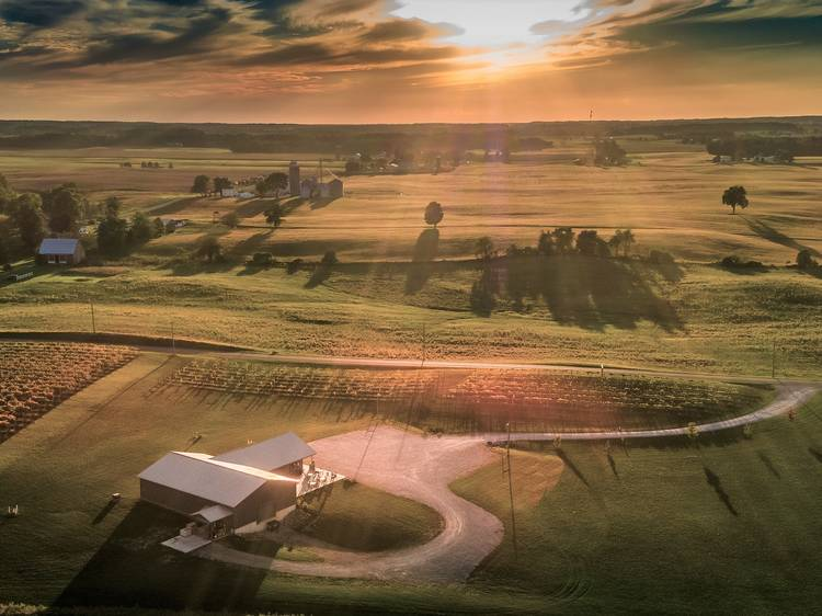 Ashley, IN: Hartland Winery