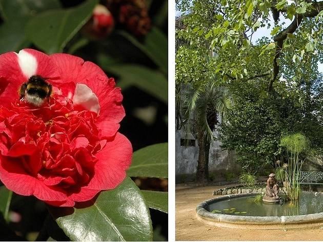Parque da Quinta das Devesas / Parque das Camélias