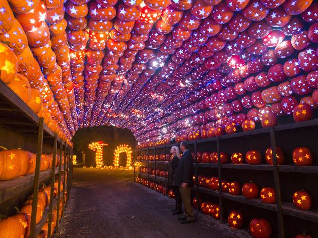 Great Jack O'Lantern Blaze at Van Cortlandt Manor in Croton-on-Hudson on September 27, 2018.  (Photo by Tom Nycz)