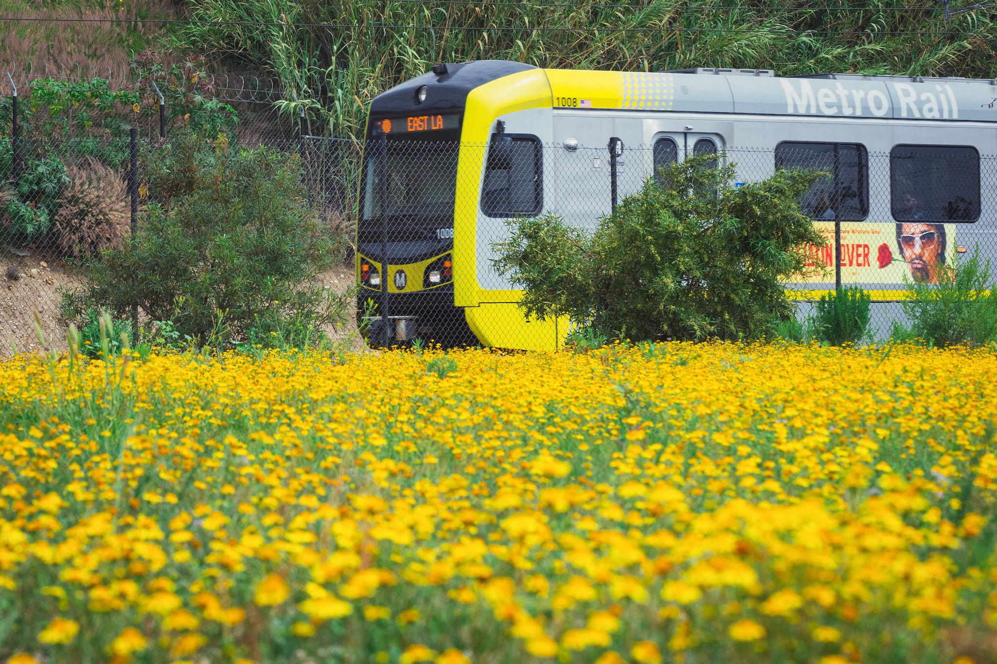 Metro might make bus and rail service free in Los Angeles