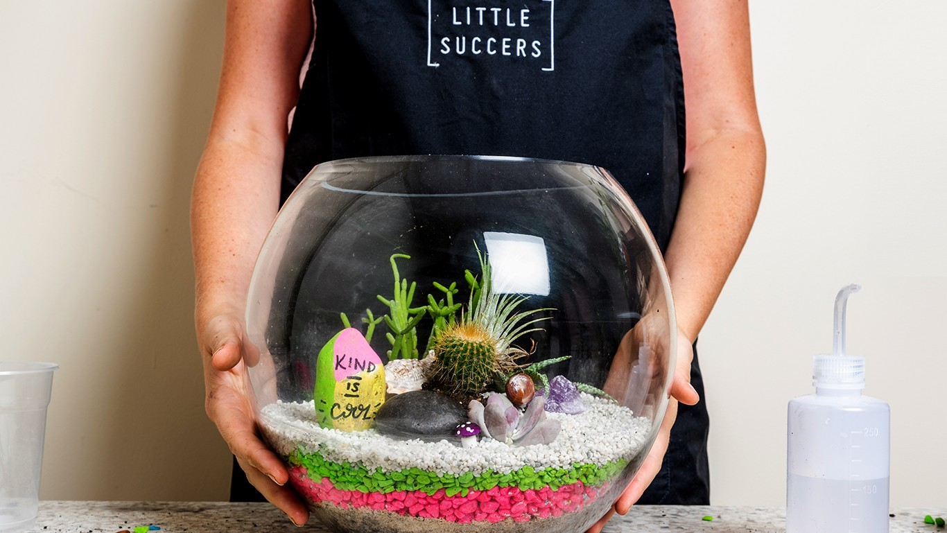 Person holding a terrarium