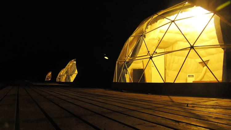 那須高原りんどう湖オートキャンプ&グランピング場