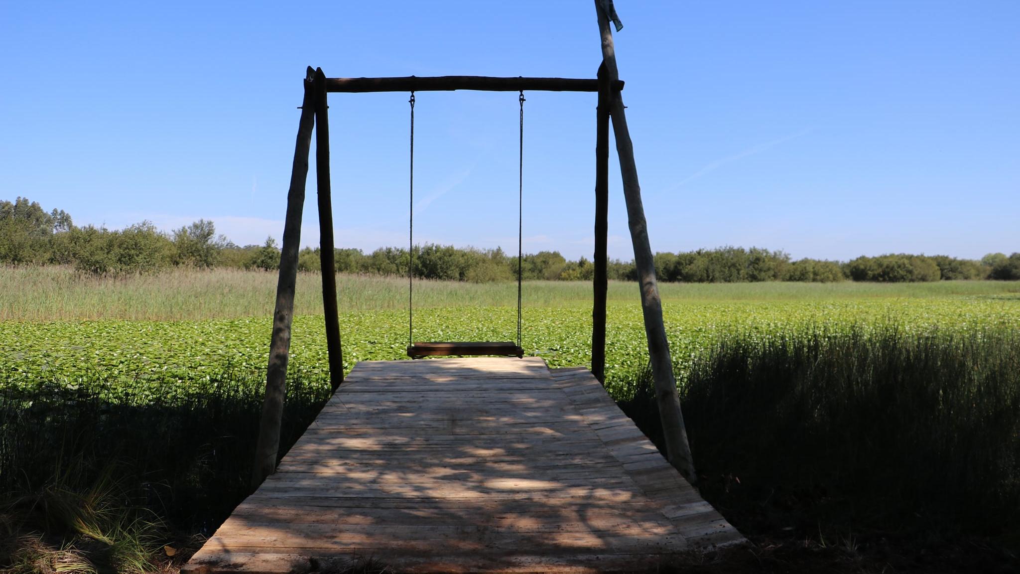 Há um novo baloiço em Portugal para voar sobre um campo de nenúfares