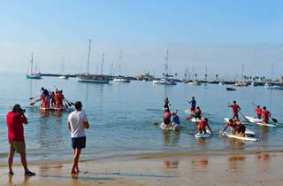 Actividades, Lazer, Paddle, SurfnPaddle