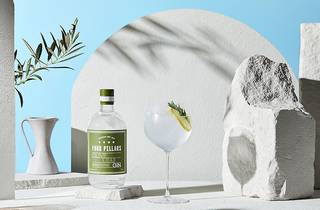 Bottle of gin and cocktail