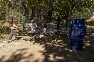 Parque Canino da Quinta do Covelo