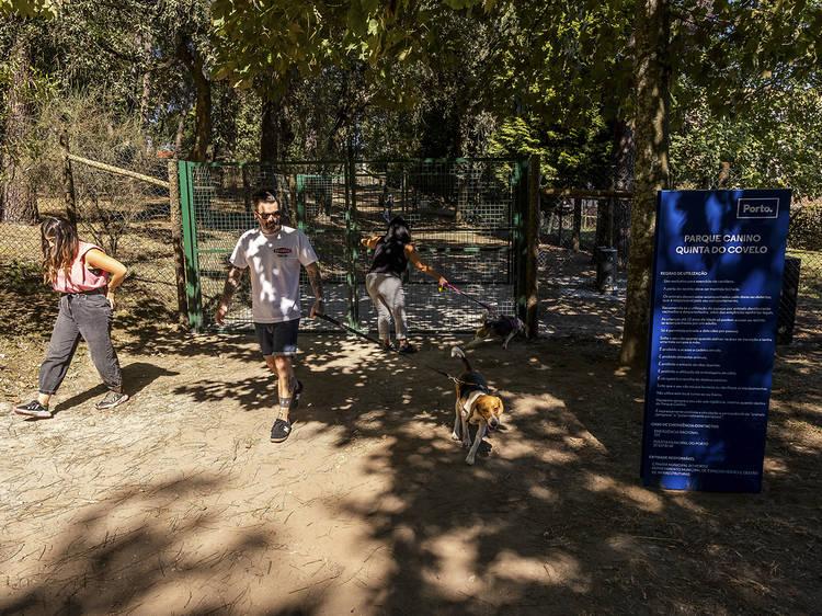 Leve o seu animal de estimação a passear ao Parque Canino da Quinta do Covelo
