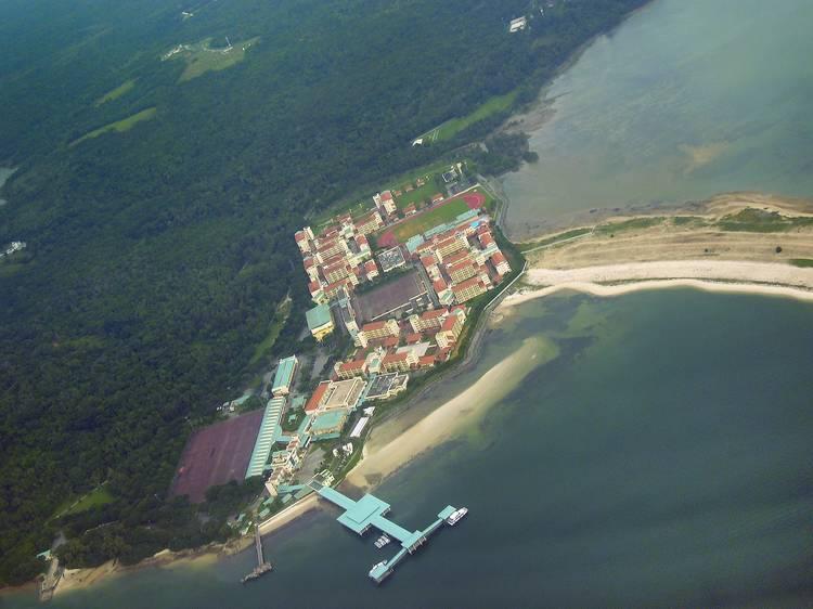 Pulau Tekong