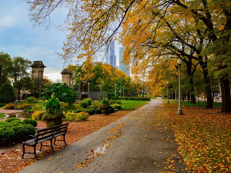 How to spend fall in Chicago