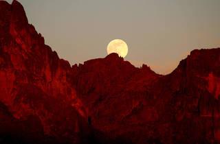 Photograph: Danette C / Shutterstock.com