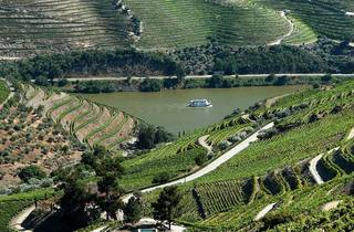 Quinta do Crasto no Douro