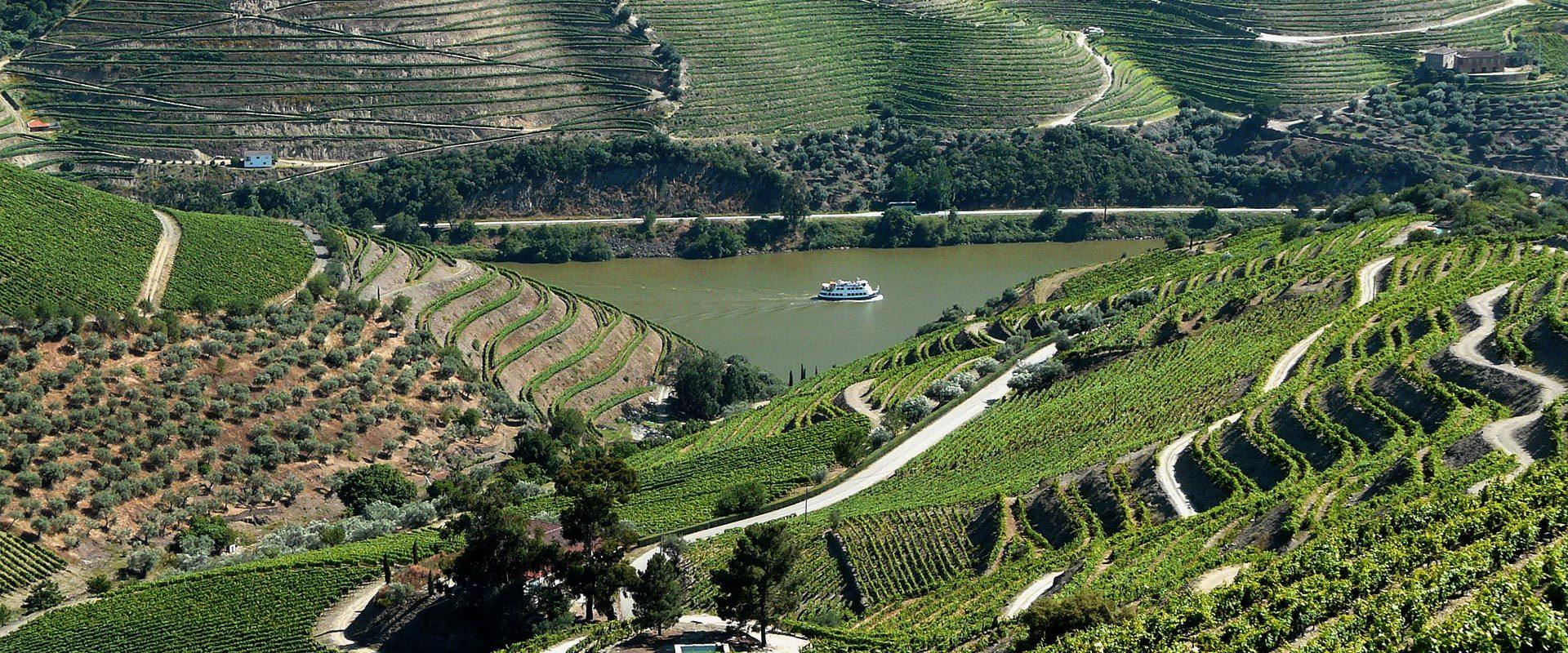Quinta do Crasto no Douro