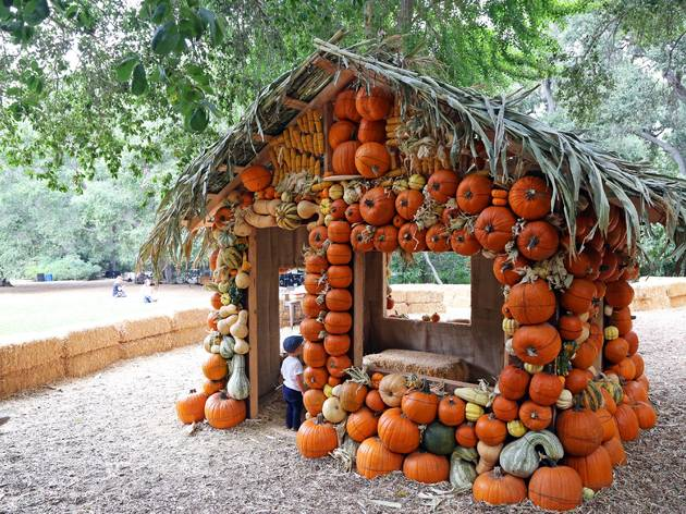 Halloween at Descanso