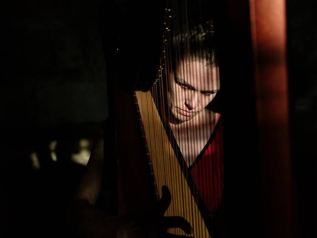 Música, Harpistas, Angélica Salvi