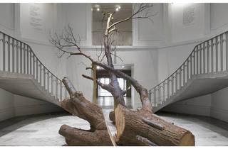 Nature Abhors a straight line de Gabriela Albergaria