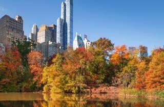 fall NYC
