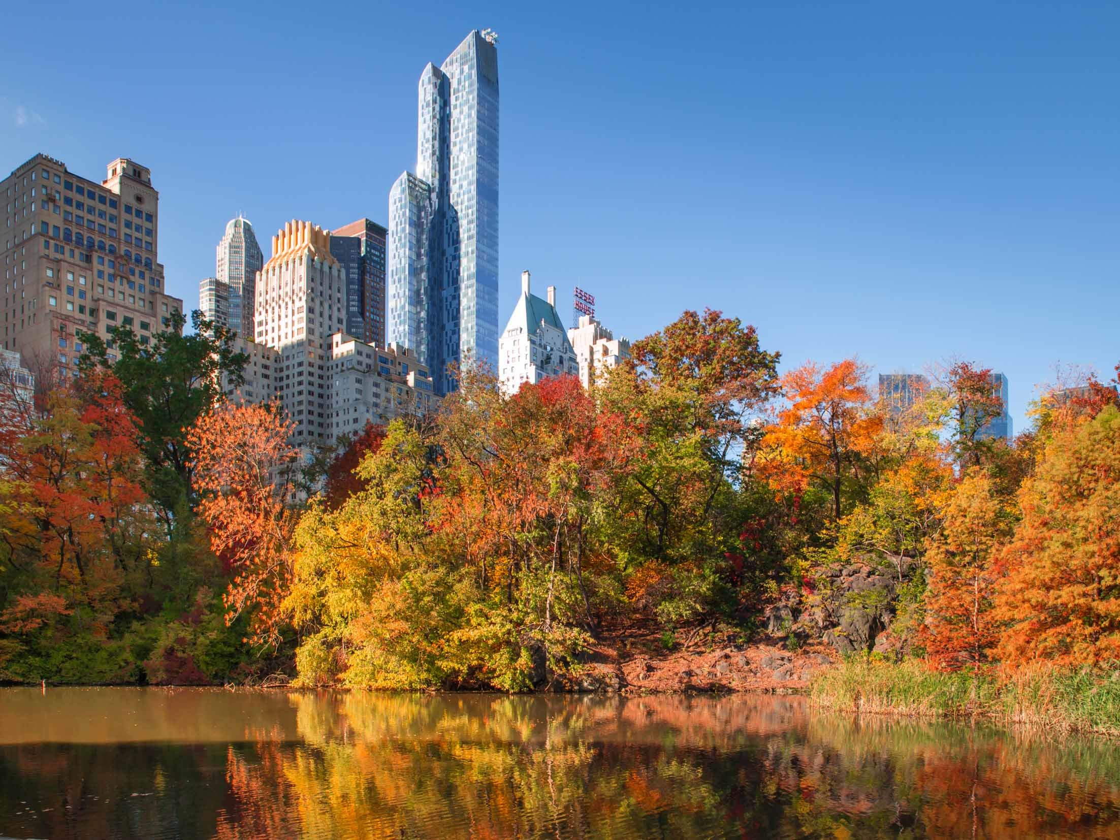 25 ways to still have an amazing fall in NYC