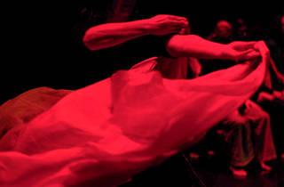 Palco, Dança, Acontece, Festival Mental