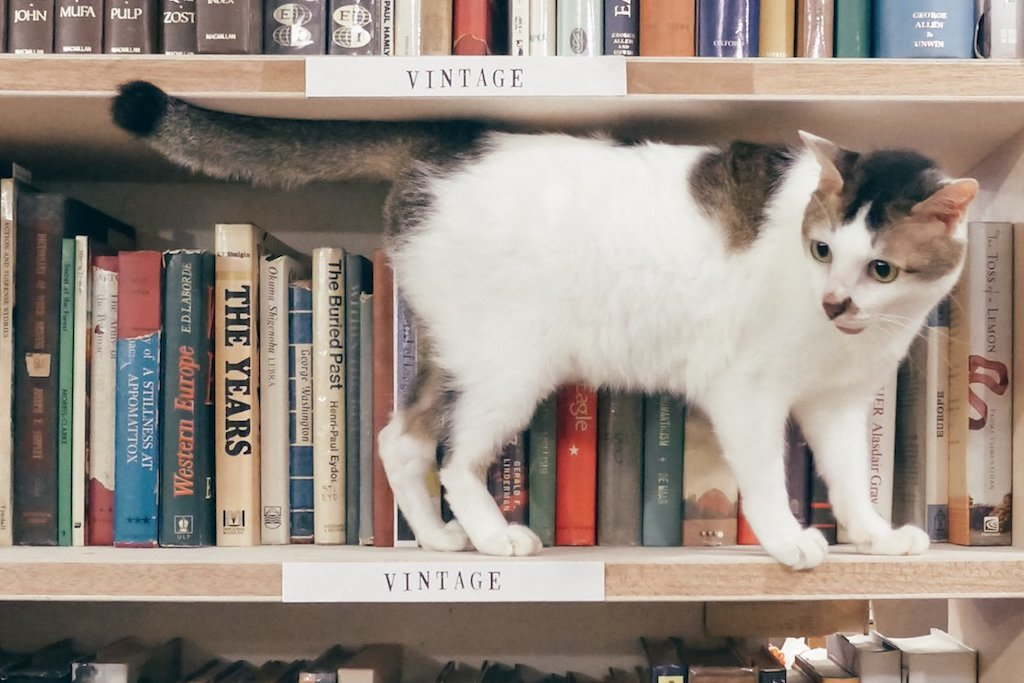 BooksActually closes its physical store in Tiong Bahru and goes online
