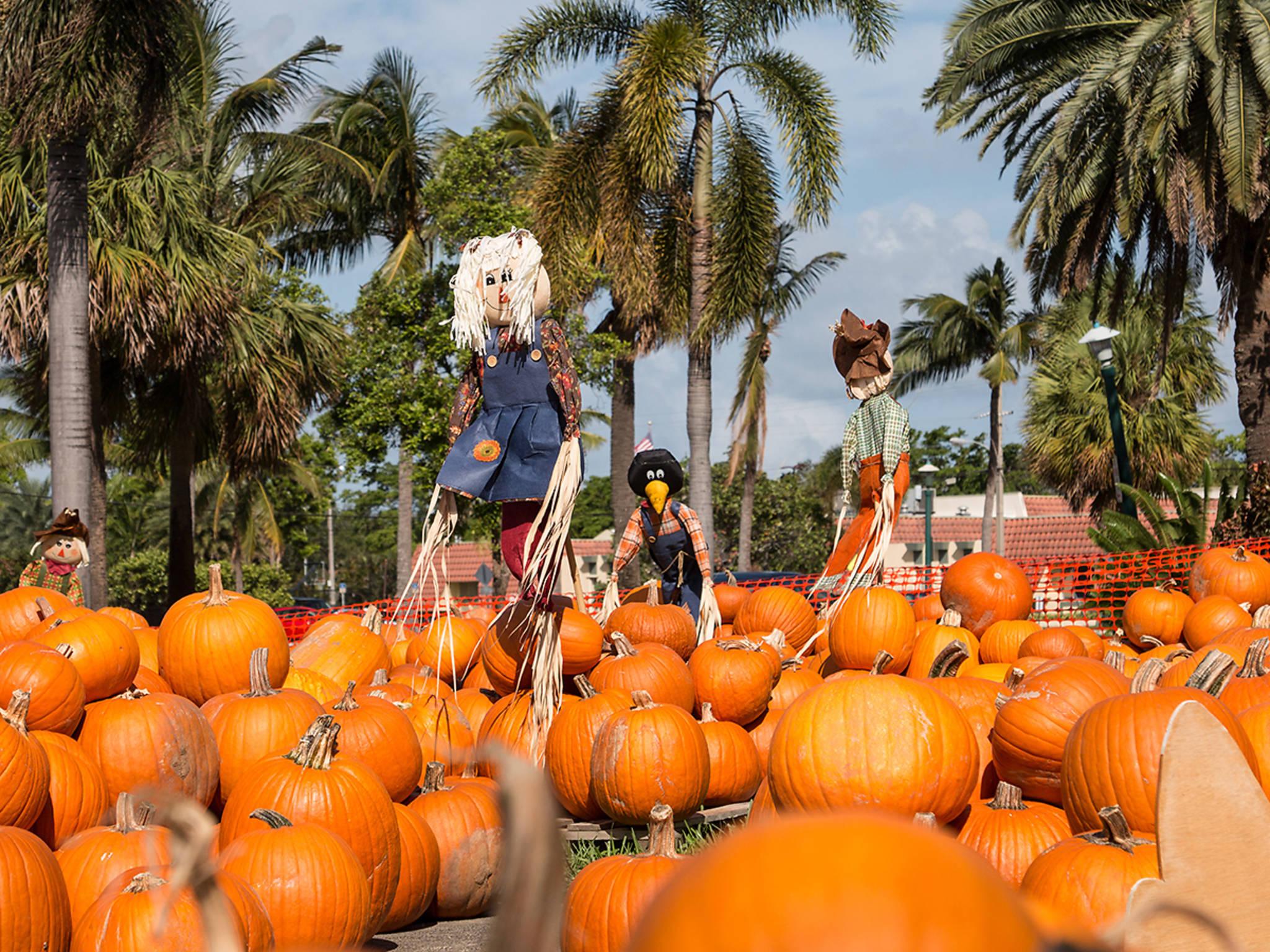 Fall events in Miami
