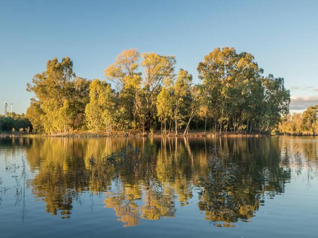 Newey Reservoir Cobar