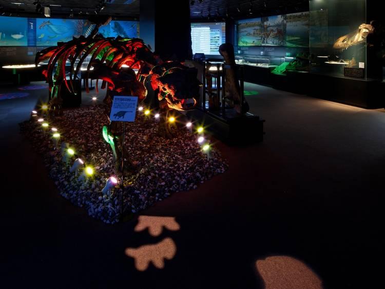 夜の博物館を独り占めする。