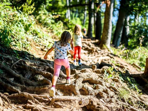 Hiking trails for NYC families
