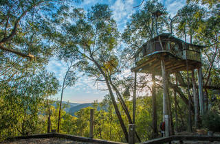Wollemi Treehouse