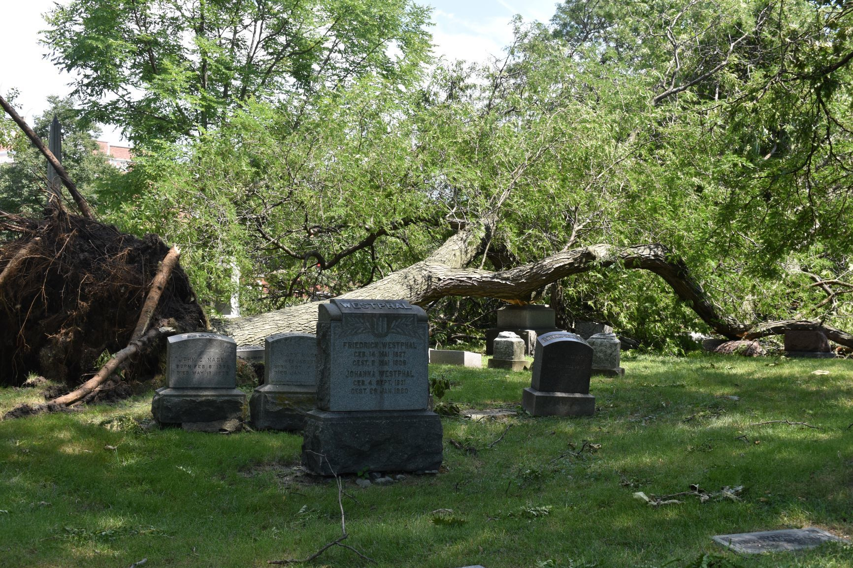 Check out before and after photos of Graceland Cemetery, newly reopened after last month's derecho