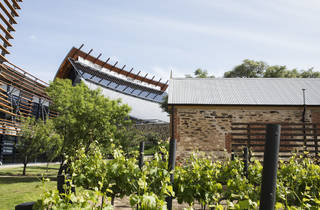 The exterior of a historic brick building and grape vines