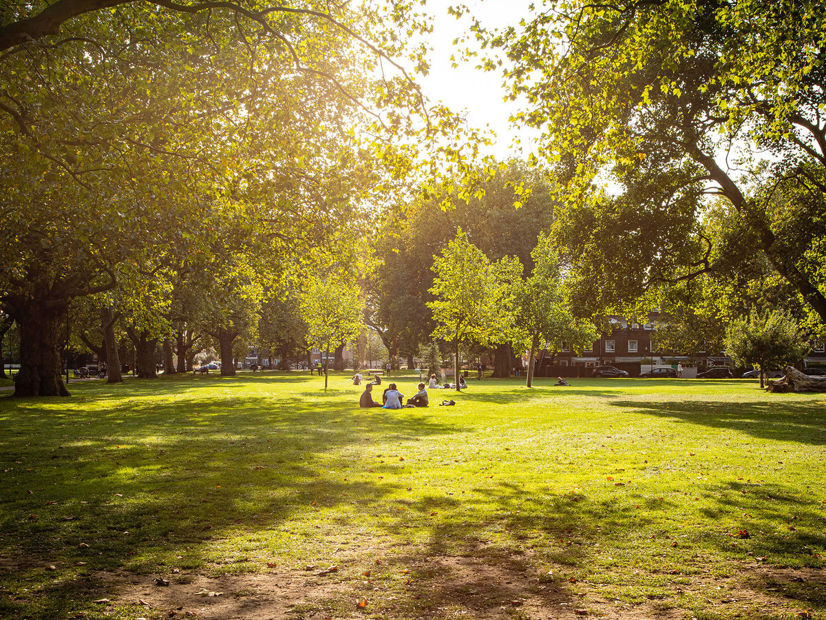 How London's parks saved us in the city's weirdest year