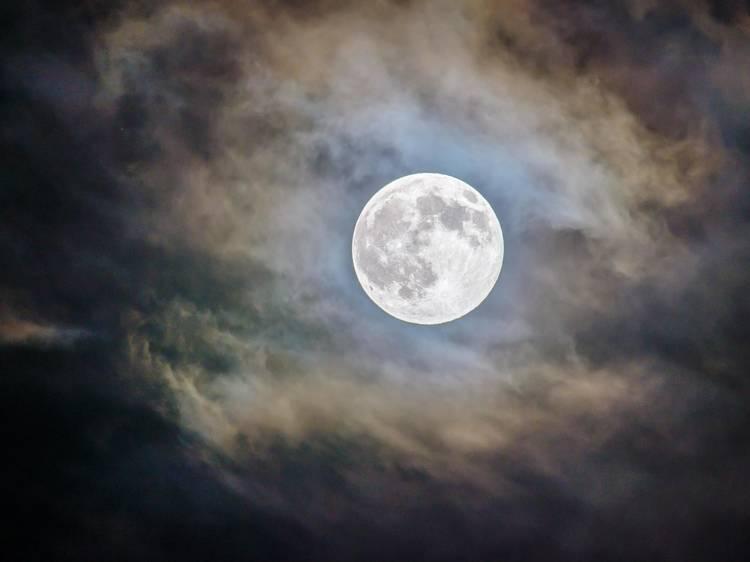Ver a Lua Azul no Halloween