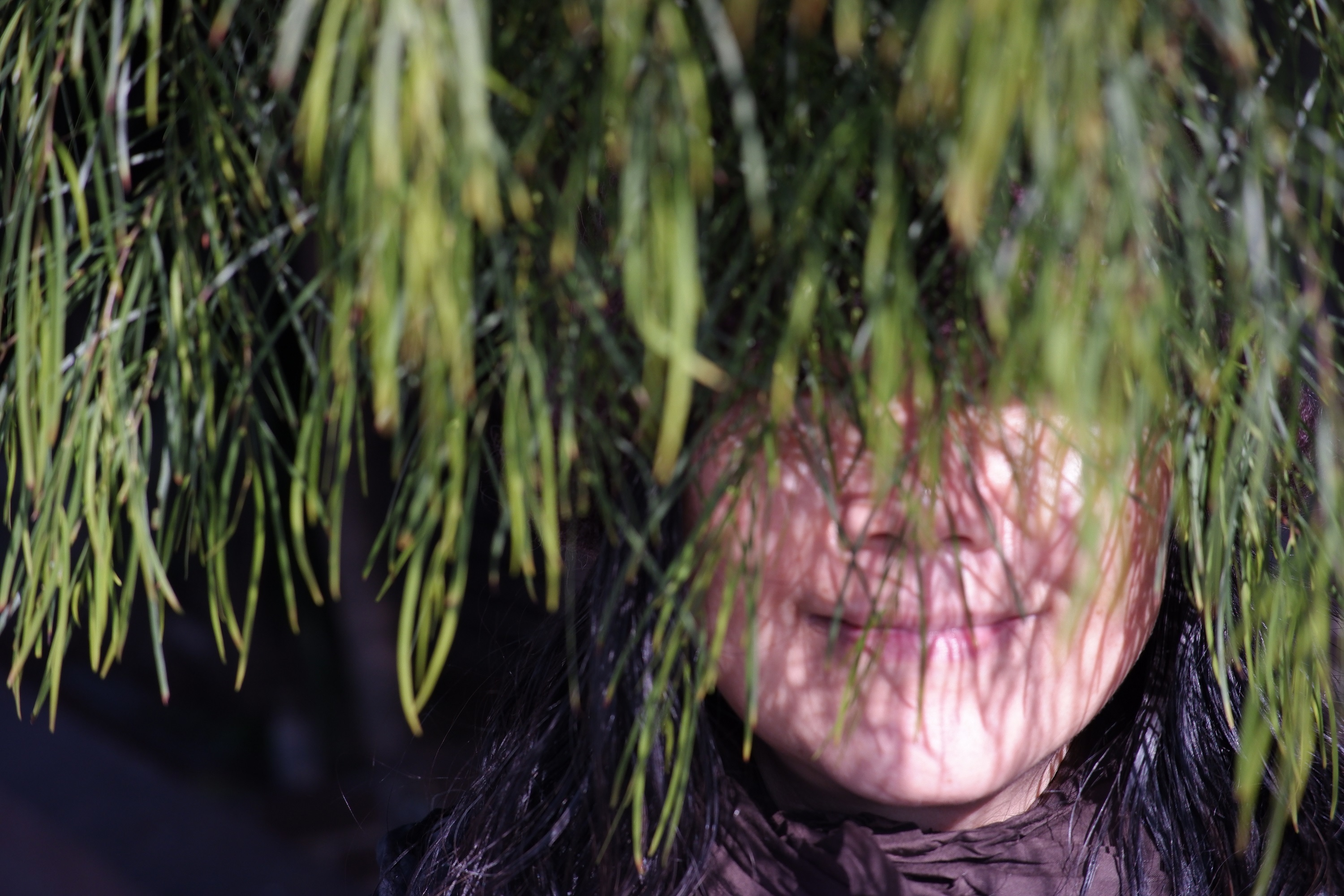 A smiling person's face, obscured by pine needles drooping over them