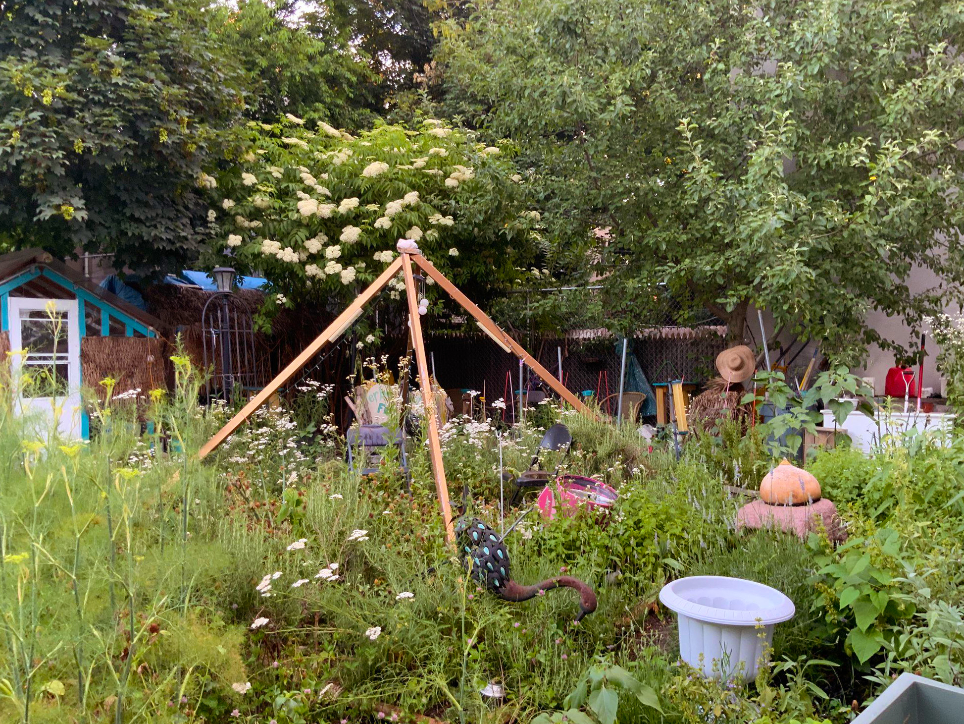 Hattie Carthan Community Garden Bed-Stuy