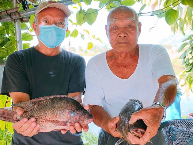 Uncle Kun Fish Ponds